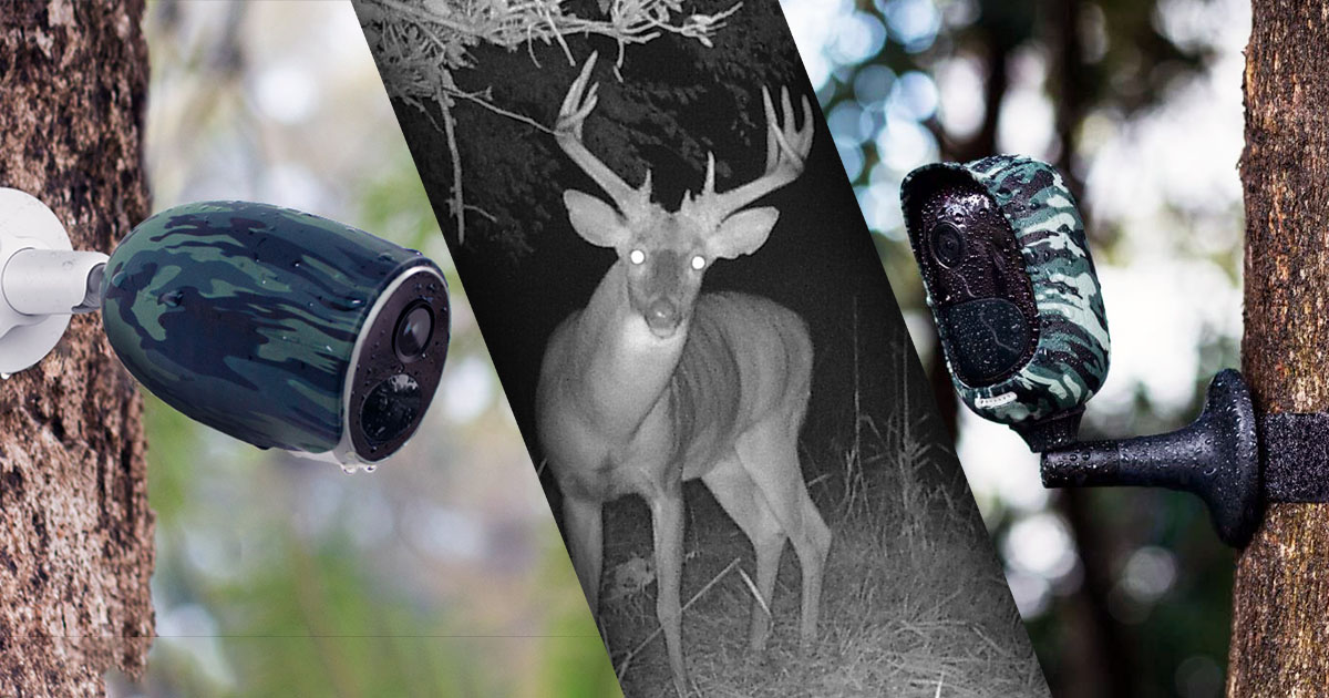 Lovačke kamere – napredna tehnologija snimanja divljači